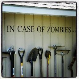 Horreur dans la cabane